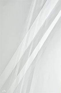 Gempaper-shakara-copyright-2012-arha-Tomomichi-Morifuji-212-320