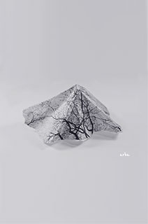 Little-mountain-copyright-2012-arha-Tomomichi-Morifuji-s