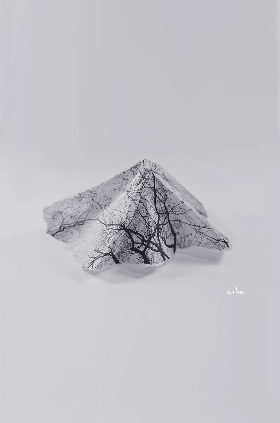 Little-mountain-copyright-2012-arha-Tomomichi-Morifuji
