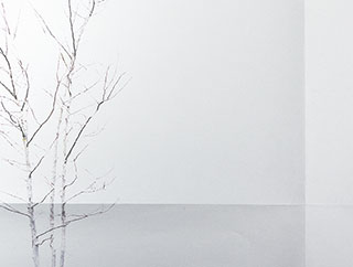 Division-tree-minimalism-copyright-2013-arha-Tomomichi-Morifuji-s