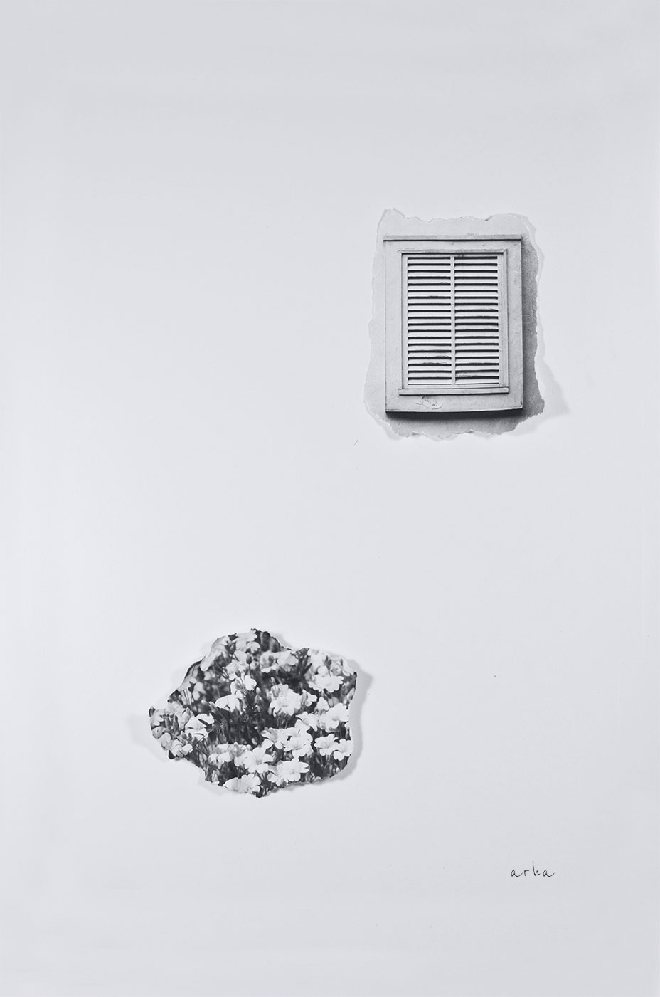 Window-and-flower-minimalism-copyright-2013-arha-Tomomichi-Morifuji