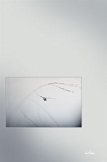AKSP-minimalism-s