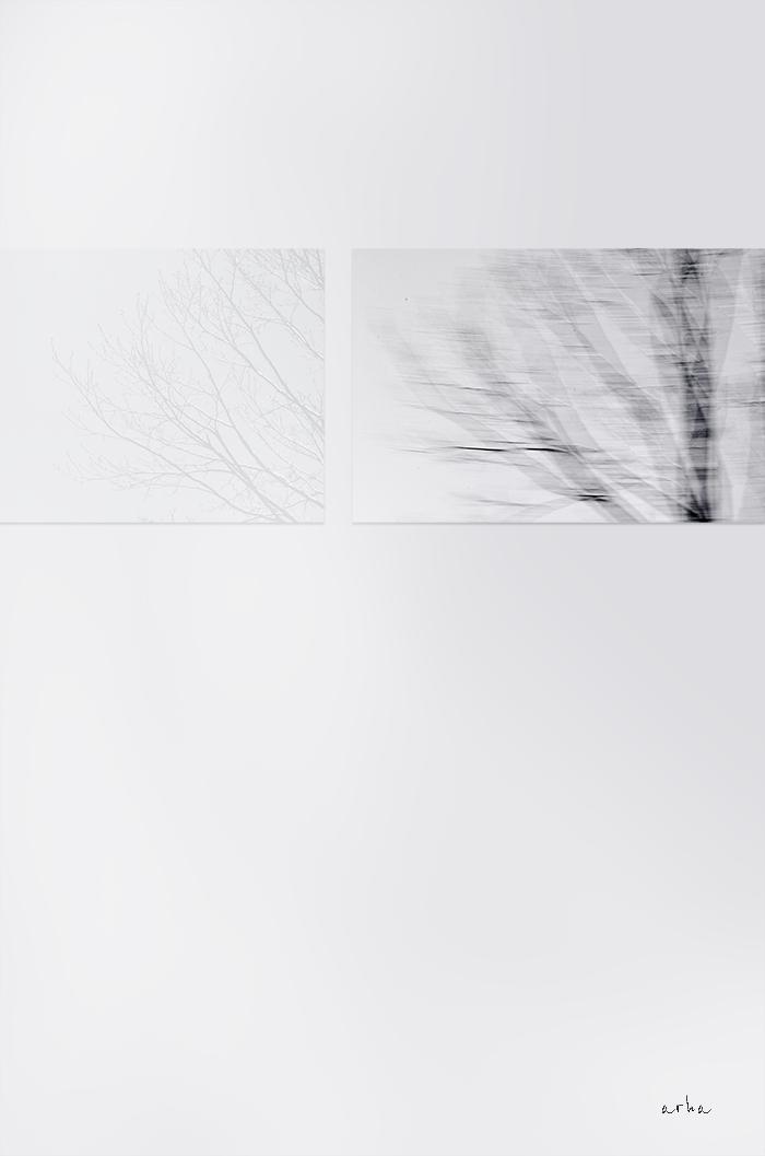 Ave-Maria-minimalism