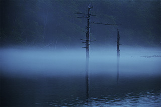 Taisho-pond-of-early-morning-mist-in-kamikochi-s