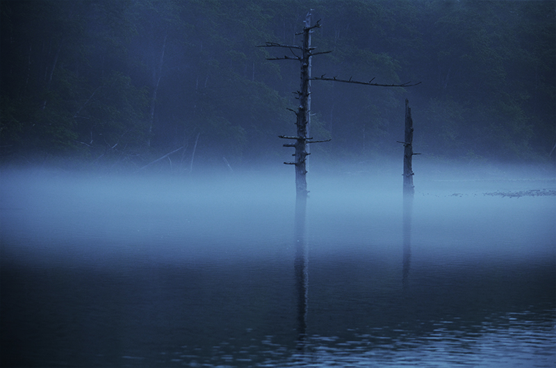 Taisho-pond-of-early-morning-mist-in-kamikochi